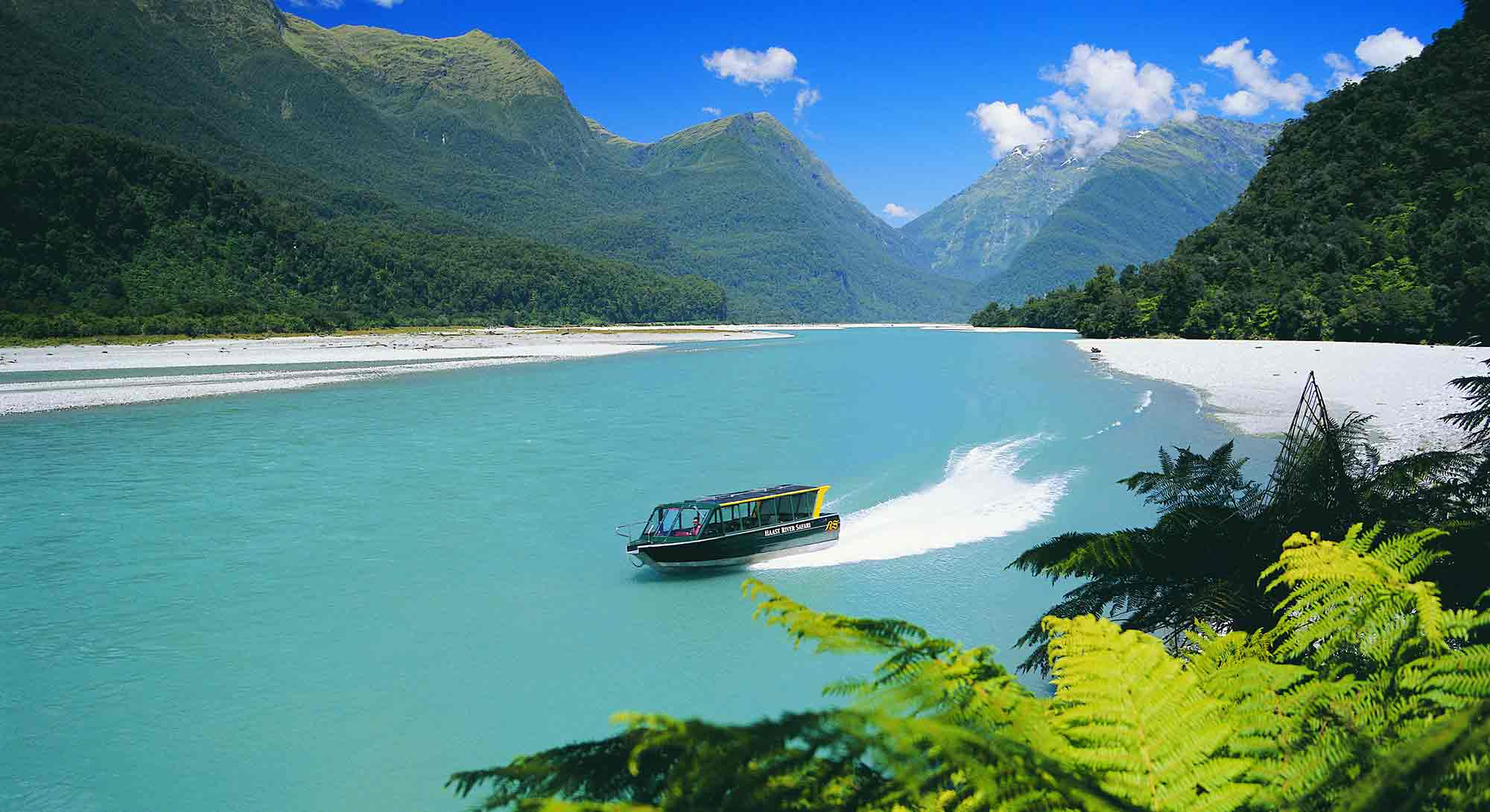 Haast River Safari jet boat tour